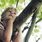 ağaç ve çocuk